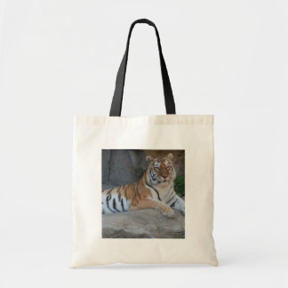 Bengal Tigers Tote Bag