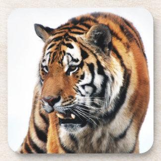 Bengal Tigers Wild Life Coaster