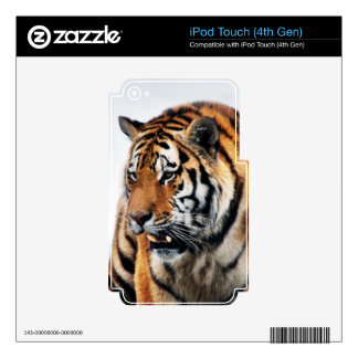 Bengal Tigers Wild Life iPod Touch 4G Decal