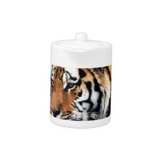 Bengal Tigers Wild Life Teapot