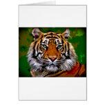 Bengal tigre