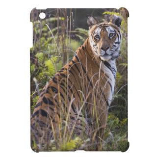 Bengal tigress in tall grass, trying to hunt, iPad mini cases