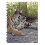 Bengala Tiger-001 Libretas Espirales