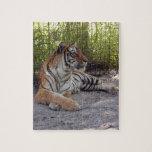 Bengala Tiger-001 Rompecabeza Con Fotos
