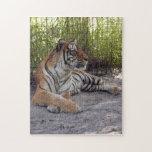 Bengala Tiger-001 Rompecabezas
