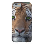 Bengel Tiger green eyes iPhone 6 Case