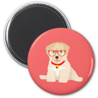 Benjamin The Hipster Havanese Puppy Magnet
