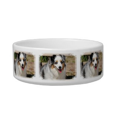 Beach Themed Bennett - Aussie Mini - Rosie - Carmel Beach Bowl