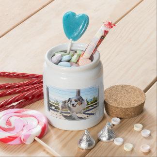 Bennett - Aussie Mini - Rosie - Carmel Beach Candy Dish