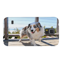 Case-Mate Barely There Samsung Galaxy S5 Case with Australian Shepherd Phone Cases design