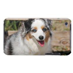 Case-Mate iPod Touch Barely There Case with Australian Shepherd Phone Cases design