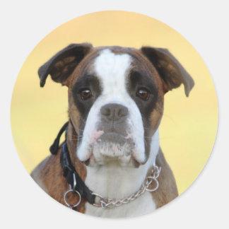 Benson the Boxer Classic Round Sticker