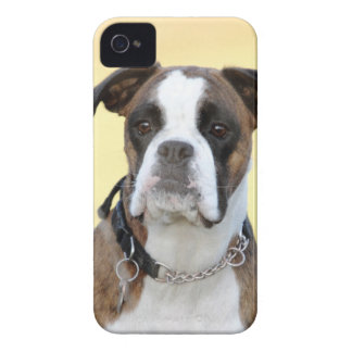 Benson the Boxer dog iPhone 4 Case-Mate Case
