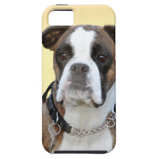 Benson the Boxer dog iPhone SE/5/5s Case