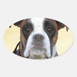 Benson the Boxer Oval Sticker