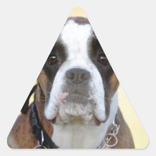 Benson the Boxer Triangle Sticker