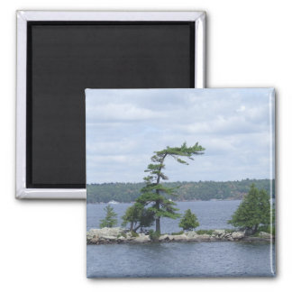 Bent Tree, Muskoka, Ontario, Canada 2 Inch Square Magnet