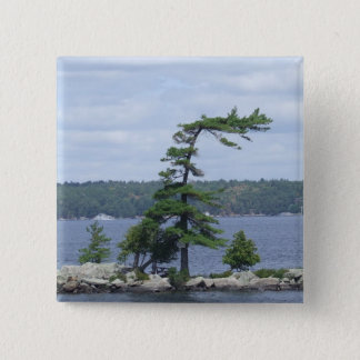 Bent Tree, Muskoka, Ontario, Canada Pinback Button