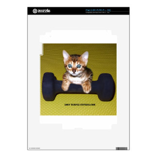 Bental Kitten with Dumbbell Yellow iPad 2 Decal