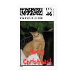 Bentley at Christmas 010 - Eyes-Darkened, Merry... Stamps