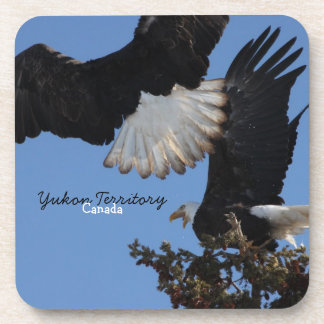 BEOAT Bald Eagles on a Treetop Beverage Coaster