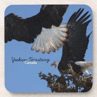 BEOAT Bald Eagles on a Treetop Beverage Coaster