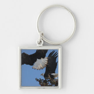 BEOAT Bald Eagles on a Treetop Keychain