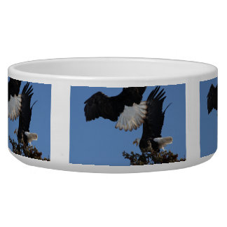 BEOAT Bald Eagles on a Treetop Dog Bowl