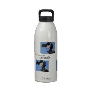 BEOAT Eagles calvo en una copa Botella De Agua