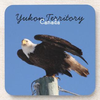 BEOUP Bald Eagle on Utility Pole Beverage Coaster