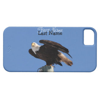 BEOUP Bald Eagle on Utility Pole iPhone SE/5/5s Case