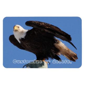 BEOUP Bald Eagle on Utility Pole Magnet