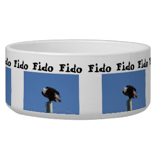 BEOUP Bald Eagle on Utility Pole Dog Water Bowls