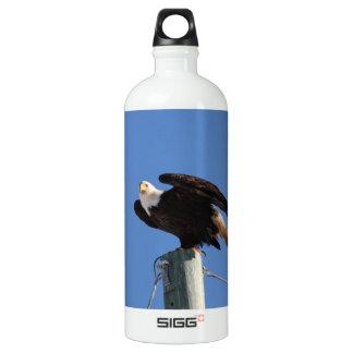 BEOUP Bald Eagle on Utility Pole SIGG Traveler 1.0L Water Bottle