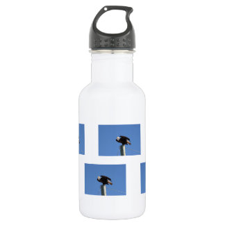 BEOUP Bald Eagle on Utility Pole Stainless Steel Water Bottle
