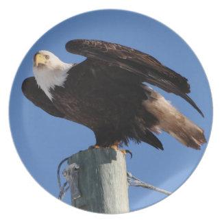 BEOUP Eagle calvo en poste para uso general Platos De Comidas
