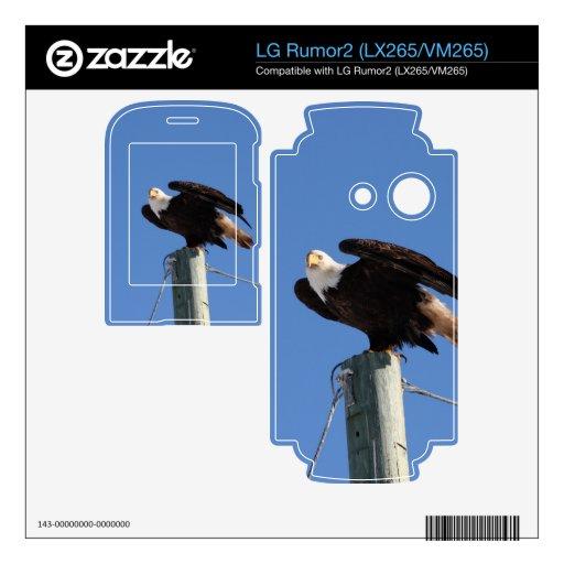 BEOUP Eagle calvo en poste para uso general Skin Para El LG Rumor2