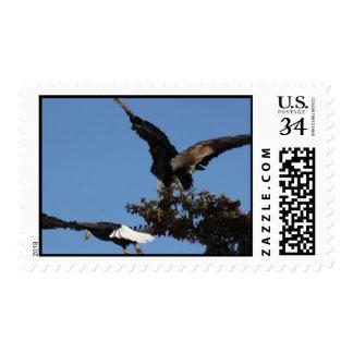 BEPP Bald Eagle Parking Problems Postage