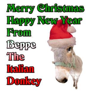 beppe the italian christmas donkey holiday postcard - The Italian Christmas Donkey