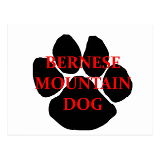 ber mt dog name  paw.png postcard