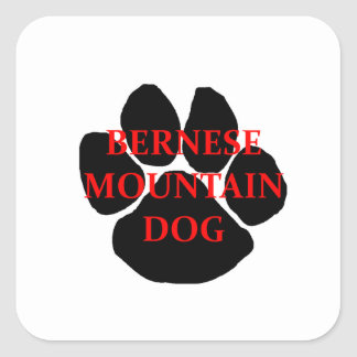 ber mt dog name  paw.png square sticker