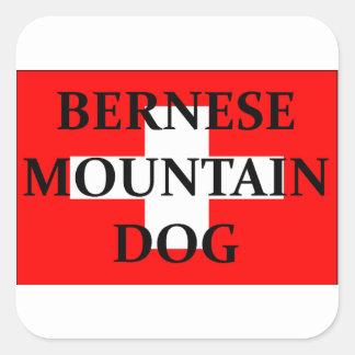 ber mt dog name switzerland flag.png square sticker