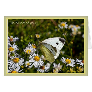 Bereavement/Loss Card-With Quote Card