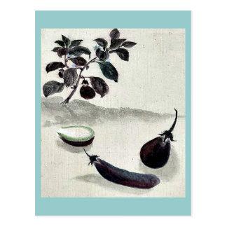 Berenjenas con la planta que crece en el fondo Uki Postal