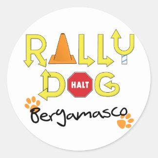Bergamasco Rally Dog Classic Round Sticker