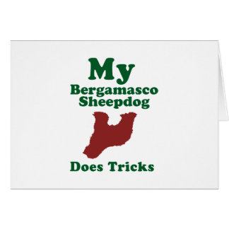 Bergamasco Sheepdog Greeting Cards
