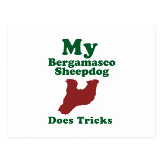 Bergamasco Sheepdog Post Cards