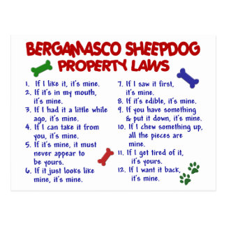 BERGAMASCO SHEEPDOG Property Laws 2 Post Card