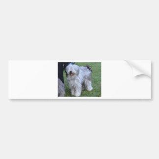 Bergamasco Shepherd Dog Bumper Sticker