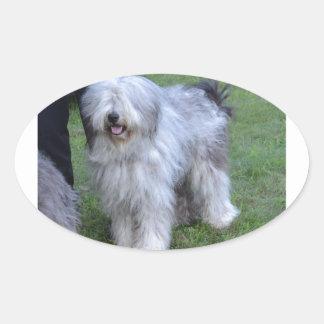 Bergamasco Shepherd Dog Oval Sticker